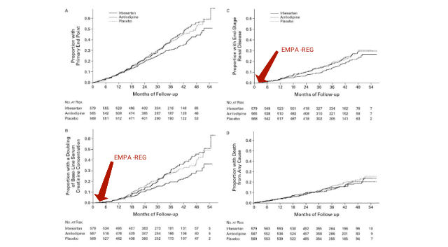 SGLT2 inhibitors and nephroprotection: a perspective on the renal outcome data